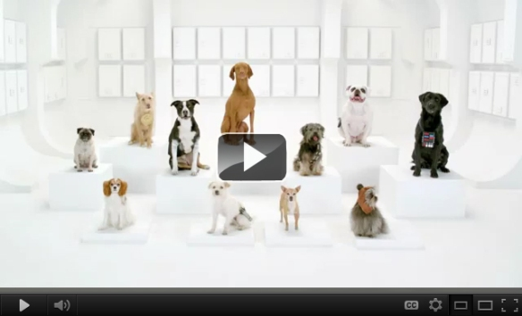 The Bark Side: 2012 Volkswagen Game Day Commercial Teaser