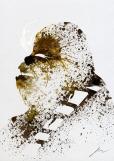 Star Wars Paint Splattered Chewie