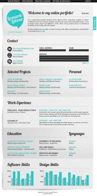 Creative CV _ Resume Examples 12