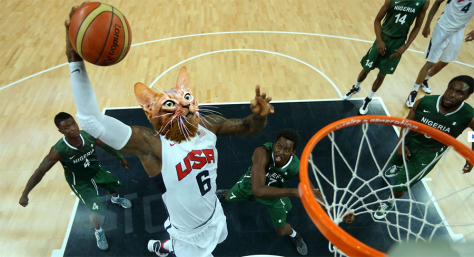 Cat Olympics - Basketball Dunk