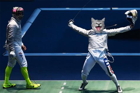 Cat Olympics - Fencing