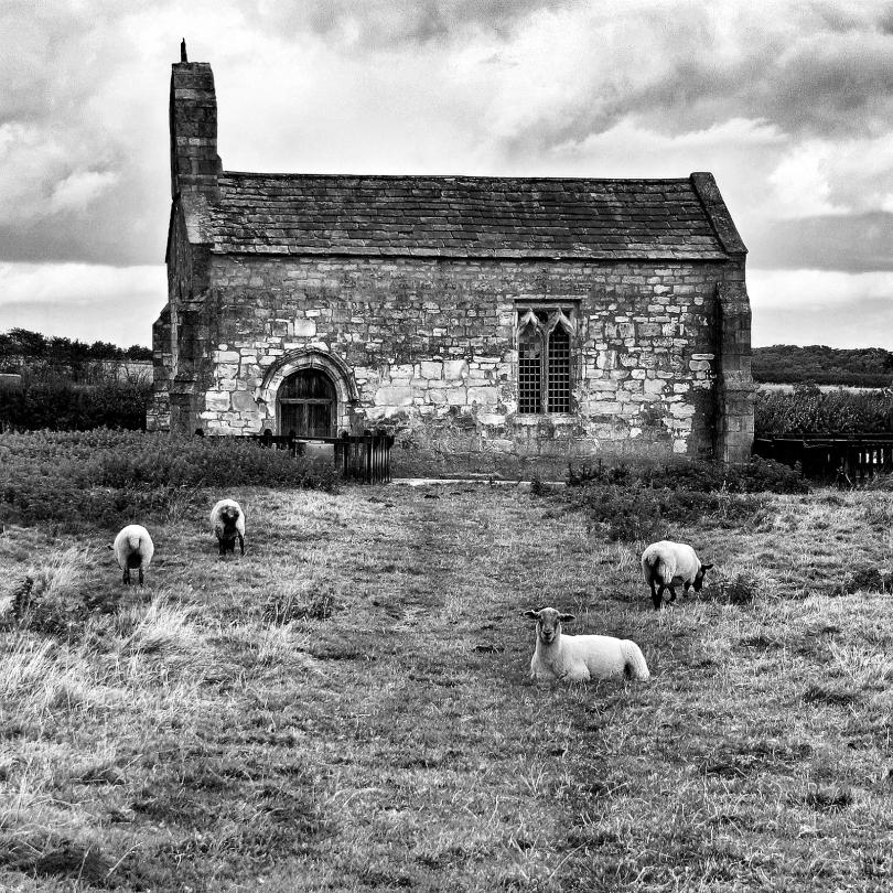 St Marys Chapel Lead near Saxton North Yorkshire 01