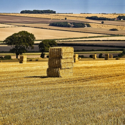 The Scenic Route to the East Coast The North Yorkshire Wolds 01 MilnersBlog