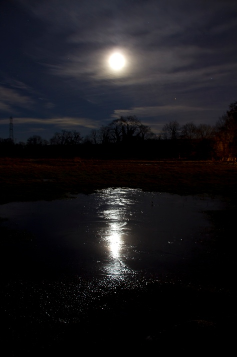 Moon Ice Reflections