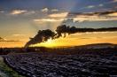 Dawn of a New Season | Dec 2012