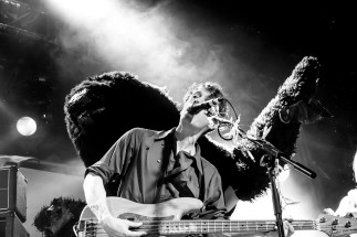 Hamilton & Bear | British Sea Power