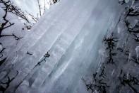 Ice Tenticles