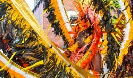 Leeds Carnival ©2013 Carl Milner No_20