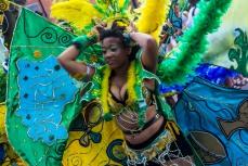 A Carnival Beauty
