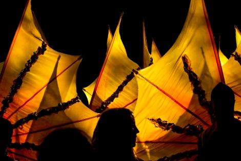 Carnival Wings