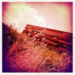 Infra-red Hipstamatic