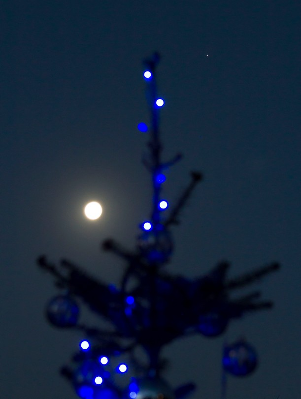 Wordpress Weekly Photo Challenge Twinkle Christmas Tree Moon Star Carl Milner Photography