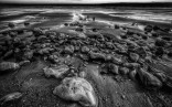 Serenity Photography by Carl Milner. Filey Beach 05