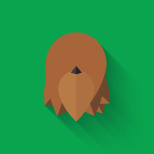 The Art of Star Wars The Force Awakens Icons - Chewbacca
