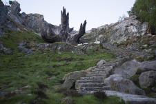 Star Wars _ The Last Jedi Temple of the Jedi Order Tree