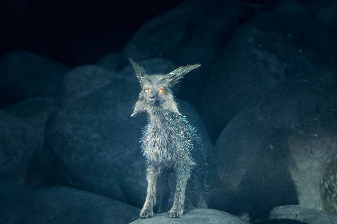 Vulptex - The Crystal Fox - Star Wars - The Last Jedi