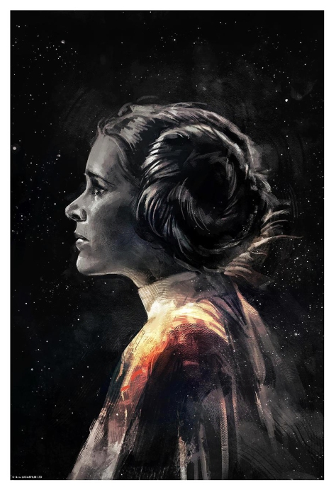 Leia Star Wars Portrait Series by Alice X Zhang