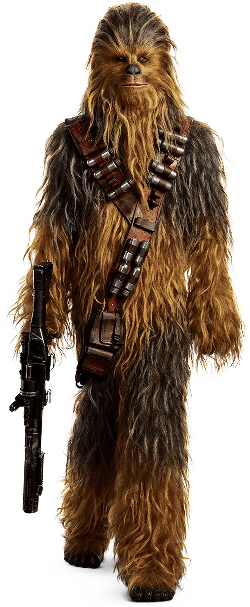 characters-of-solo-a-star-wars-story-the-mighty-chewbacca-transparent-background-png.png