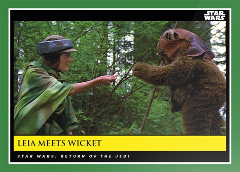 Leia meets Wicket _ Star Wars Galactic Moments Countdown to Episode 9 The Rise of Skywalker_ Week 15 Card 44