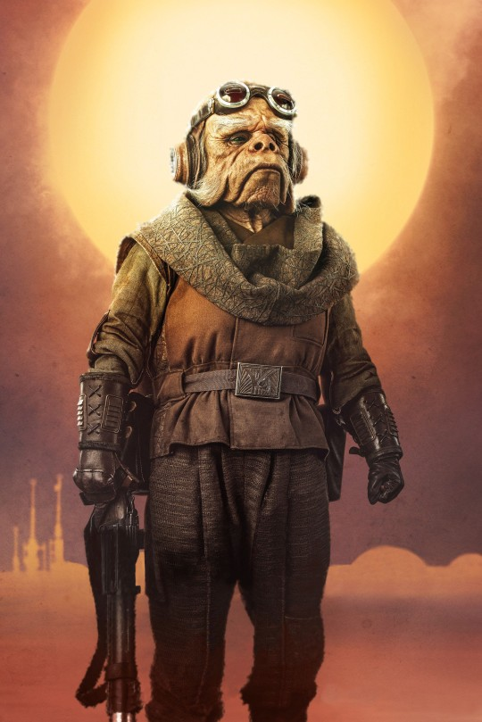 Star Wars The Mandalorian – Textless Character Posters – Kuiil the Ugnaught
